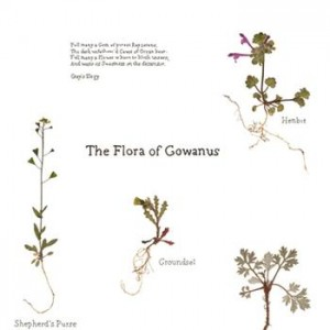 Flora of Gowanus